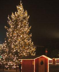 Albero di Natale a Cervia