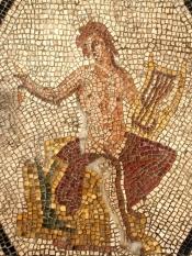 Particolare dei Mosaici della Domus del Chirurgo