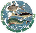 mosaico della Domus di Rimini