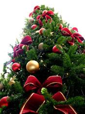 Natale Riccione