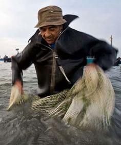 Pescatore di Cesenatico